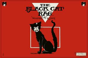 300 x 200 BLACK CAT