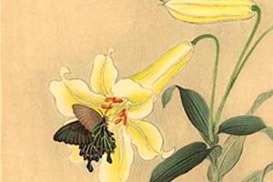 Schumann-Papillons-Opus-2-VIII