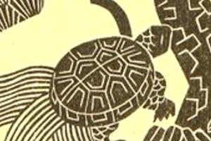 Ibert-Histoires-La-meneuse-de-tortues-dor