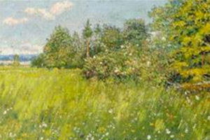 On-the-Green-Meadow-Opus-99-1