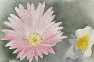 Arne-Thomas-When-daisies-pied