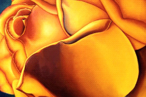 Traditional-The-Yellow-Rose-of-Texas.jpg
