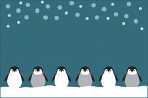 Enright-Penguins.jpg