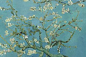 Robert-Schumann-A-Poet-s-Love-Opus-48.jpg
