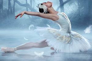 Tchaikovsky-swan.jpg