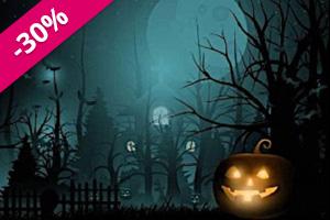 Images-bundles-pour-Halloween-debutant-sale.jpg