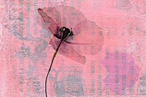 Abel-Fleury-A-flor-de-llanto.jpg
