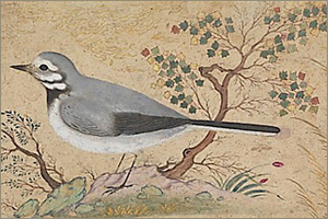 Robert-Schumann-Dichterliebe-A-Poet-s-Love-Opus-48.jpg
