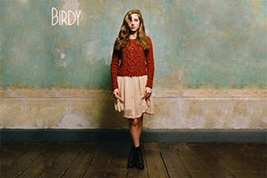300x200-Birdy.png