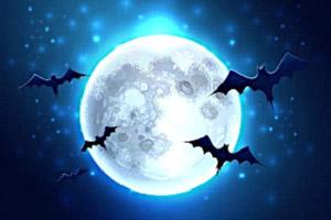 Chauve-souris-Halloween-Bundles.jpg
